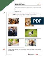 ÖI_A1_Geburtstag_und_Co-Feste_feiern.pdf
