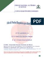 Atlas de Pruebas Bioquimicas Para Identi