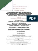 Programa 2015 Aaa
