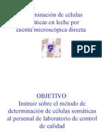 CURSO PARA LA Determinación de células somáticas.ppt