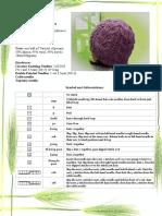 Irina - Lace Hat.pdf
