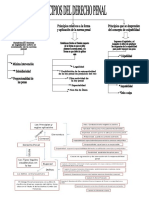 Mapa Conceptual Acerca Los Principios Del Derecho Penal