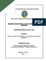 Informe Expediente Penal.doc-selva