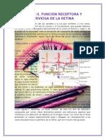 El Ojo II. Función Receptora y Nerviosa de La Retina