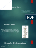 Sistema Óseo (1)