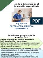 1.2 Funcion Atencion Primaria y Especializada