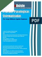 INVESTIGACION_PRUEBAS_SISTEMATIZADAS.pdf