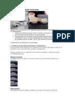 Aditamentos de Sujecion en Radioterapia - Inmovilizacion de Extremidades - Rodrigo Carrero