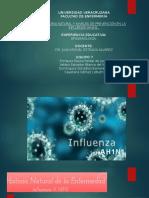 Influenza AN1N1