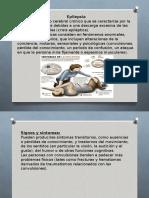 Diapositivas Pato CEREBRO