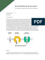 Mecanismo de transferencia de los toxico, y fotografia.docx