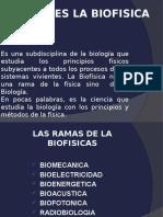 P1 biofisica