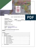 4 Informe Escudos