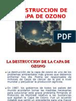4) CAPA DE OZONO