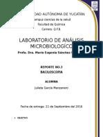 García Julieta Reporte 3 Final