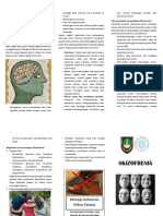 Leaflet Skizofrenia