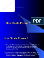 How Scale Forms