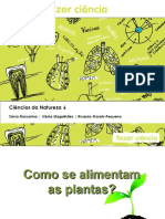 como se alimentam as plantas.ppt
