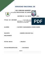 DEFENSA (2)