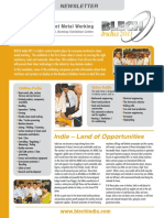BI_newsletter_Feb_2011.pdf