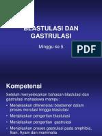 5. Blastulasi Dan Gastrulasi