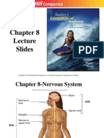 Seeley's Chapter 8 Nervous System