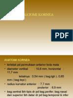 Anatomi Mata Doang