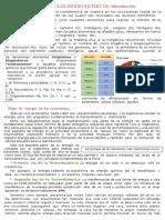 Intro Ciclos Biogeoquímicos - 1ro Sec