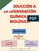 Clases Biorremediacion