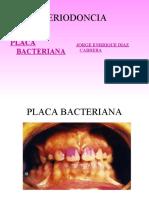 Placa Bacteriana Diana