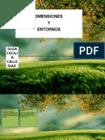 ENTORNOS Y DIMENCIONES.docx