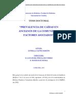 13219108.pdf