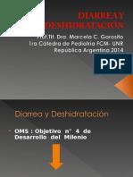 Diarrea y Deshidratacic3b3n