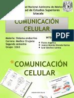 Comunicación Celular.B