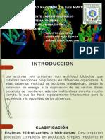 bioquimica enzimas de1