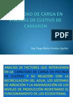 Capacidad de Carga en Piscinas de Cultivo de Camarón (Ing. Hugo Mario Armijos Aguilar)