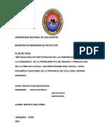 ESTRUCTURA de UN PLAN de TESIS (Preliminar Revisado Para Completar)