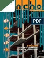 Zuncho-18.pdf