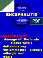 17 Enchephalites