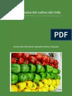 100705-monografia-chile.pdf