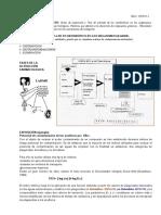 dinamica de los xenobioticos.docx