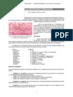 APUNTE Enterobacterias.pdf