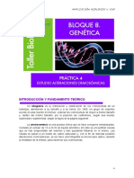 GENETICA 4-Cariotipo, idiograma, amniocentesis.pdf