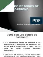 Mercado de Bonos de Carbono en El Perú