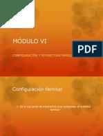 MÓDULO VI Configuracion y Estructura Familiar
