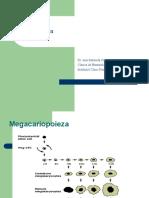 TROMBOCITOPENII (1)