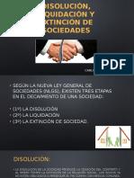 Disolución%2c Liquidación y Extinción de Sociedades-1