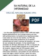 historianaturaldelaenfermedadvirusdelpapilomahumano-140312155421-phpapp02