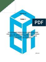 117864-C2 TEMA 1.pdf