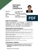 CV JULIO CAMPOS (1) (1)